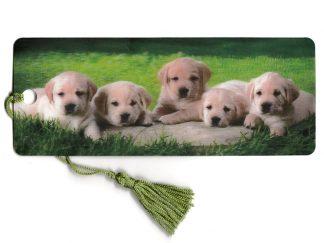 3D Puppies Bookmark